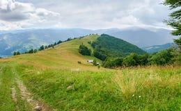 Claro en cresta de montaña con el bosque en cuestas en Cárpatos foto de archivo libre de regalías