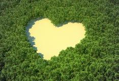 Claro en forma de corazón en un bosque Fotos de archivo