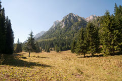 Claro en las montañas de Bucegi Fotos de archivo