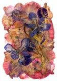 Claro multicolor abigarrado del applique de flores presionadas secadas Imagen de archivo