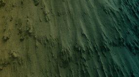 Claro - papel de parede textured do fundo do cimento marrom do sumário da cor verde Ilustração vívida do vetor ilustração do vetor