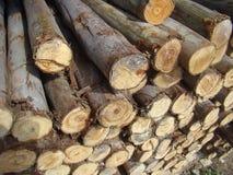 Clase apilada madera Fotos de archivo