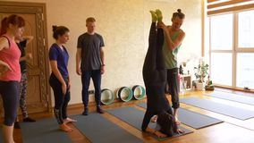 Clase de la yoga de gente que ejercita forma de vida sana en yoga del estudio de la aptitud metrajes