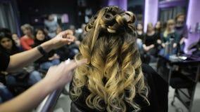 Clase principal en el arte de la peluquería, del modelo, y de muchos estudiantes de peluqueros en el fondo almacen de video