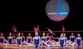 Clases de danza: formación básica Imagen de archivo
