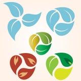 Clases de las piezas de la hoja de diseño del logotipo de las hojas ilustración del vector
