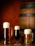 Clases del árbol de cerveza imagen de archivo libre de regalías