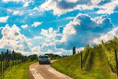 Clasic car driving over road through vineyards landscape