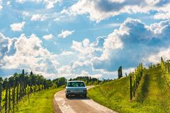 Clasic Mercedes car driving over road through vineyards landscape
