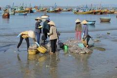 Clasificación y entrega de la captura de los pescadores en el puerto pesquero de Mui Ne Vietnam Fotografía de archivo