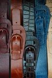 Clasped пряжки Стоковое Изображение