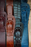 Clasped buckles Stock Image