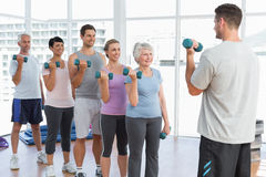 Class exercising with dumbbells in gym Royalty Free Stock Photo