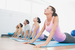 Class exercising in row at fitness studio Royalty Free Stock Images