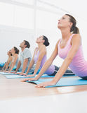 Class exercising in row at fitness studio Royalty Free Stock Photography