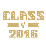 Class of 2016. High School Graduate, College Graduate. Vector lettering Royalty Free Stock Image