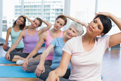 Class stretching neck in row at yoga class Royalty Free Stock Image