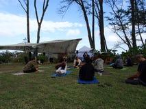 Classe all'aperto di yoga fra i grandi alberi di ironwood Fotografie Stock