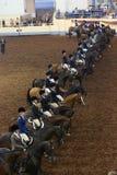 Classe d'équitation Images libres de droits