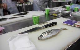 Classe da cultura do sushi do local de trabalho Imagens de Stock Royalty Free