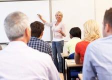 Classe de ensino do tutor sênior Imagens de Stock Royalty Free
