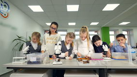 Classe di Biologia della scuola elementare Bambini che studing biologia, chimica nel laboratorio della scuola video d archivio