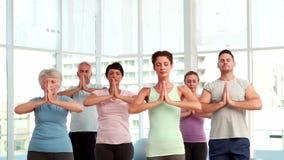 Classe di yoga che fa insieme posa dell'albero archivi video
