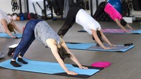 Classe di yoga del gruppo Immagini Stock