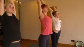 Classe di yoga di gente che esercita stile di vita sano nell'yoga dello studio di forma fisica archivi video