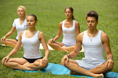 Classe di yoga Gruppo di persone che meditano al parco di estate Fotografia Stock Libera da Diritti