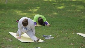 Classe di yoga in parco stock footage