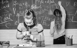 Classes de qu?mica Experi?ncia educacional Os colegas das meninas estudam a qu?mica Rea??es qu?micas dos tubos de ensaio do micro fotos de stock royalty free