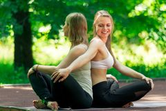 Classes with an individual yoga trainer in the park on a sunny summer day. Portrait of active women stock image