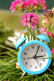 Classic alarm clock and grass Royalty Free Stock Photography