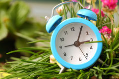 Classic alarm clock with  grass Royalty Free Stock Photography