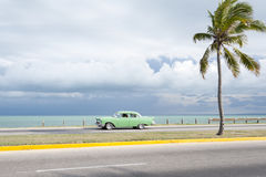 Classic American Car Varadero Cuba. Classic vintage American car drives along an empty coastal road next to single palm tree Stock Image