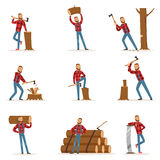Classic American Lumberjack In Checkered Shirt Working Cutting And Chopping Wood With Cleaver And A Saw Royalty Free Stock Photo