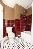 Classic antique brown and red bathroom. Royalty Free Stock Photography