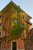 Classic apartment building Royalty Free Stock Photos