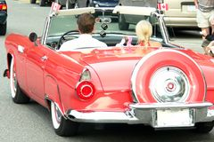 Classic Automobile royalty free stock photography