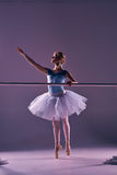 Classic ballerina posing at ballet barre Royalty Free Stock Photography
