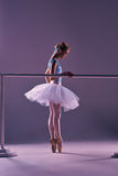 Classic ballerina posing at ballet barre. Classic ballet dancer in white tutu at ballet barre on a lilac background Stock Image