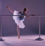 Classic ballerina posing at ballet barre Royalty Free Stock Photos