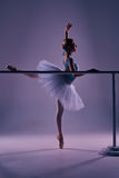 Classic ballerina posing at ballet barre Stock Images