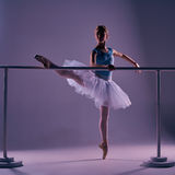 Classic ballerina posing at ballet barre Stock Image