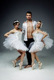 Classic ballet dancers Royalty Free Stock Image