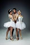 Classic ballet dancers Stock Photos