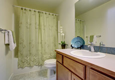 Classic bathroom with green shower curtain and tile floor. Royalty Free Stock Photos