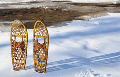 Free Classic Bear Paw Snowshoes Royalty Free Stock Image - 33357216