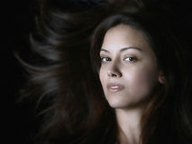 Classic Beauty Stock Images